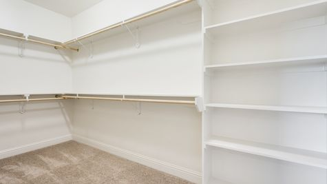 Master Closet in Model Home - DSLD Homes - The Crossings in Hammond
