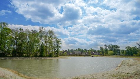 Community Pond - Cedar Springs - DSLD Homes Gonzales