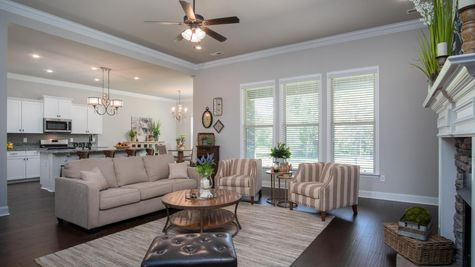 Living Room - Nature's Cove - DSLD Homes Huntsville
