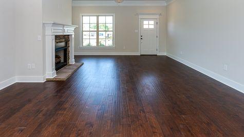 Oldtown II D - Open Floor Plan - DSLD Homes - Living room with fireplace