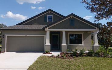 Tampa New Home Communities | William Ryan Homes